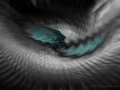 eyes of the dragon - Augen des Drachen