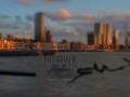 Skyline Rotterdam Maas