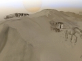 Die Wüste und das Pferd