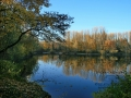 Herbstimpressionen_2012_Elbsee_Hilden_0013