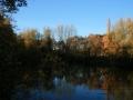 Herbstimpressionen_2012_Elbsee_Hilden_0026