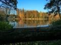 Herbstimpressionen_2012_Elbsee_Hilden_0011