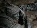 00529 Die Schlacht von Worringen Denkmal in Duesseldorf 0094