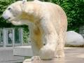 00389 Wuppertaler Zoo tiere 0002