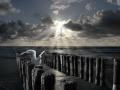 Himmel Wolken Wasser und Wellenbrecher