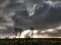Winter Impressionen Schleswig Holstein