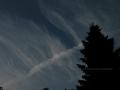 Wolken wie Rippen  032